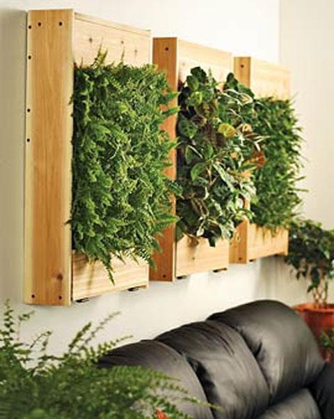 dai colore e ossigeno alla casa con i quadri vegetali. Black Bedroom Furniture Sets. Home Design Ideas