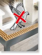 Allontanare i piccioni dal balcone - [casa, balcone]